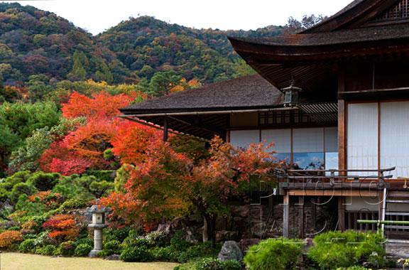 Photo Japan 2C-05