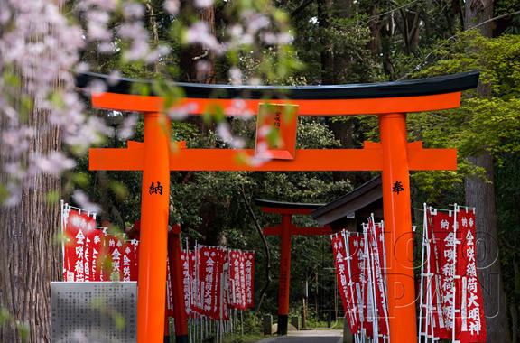 Photo Japan 3C-06