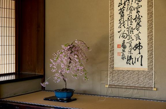 Photo Japan 4C-09