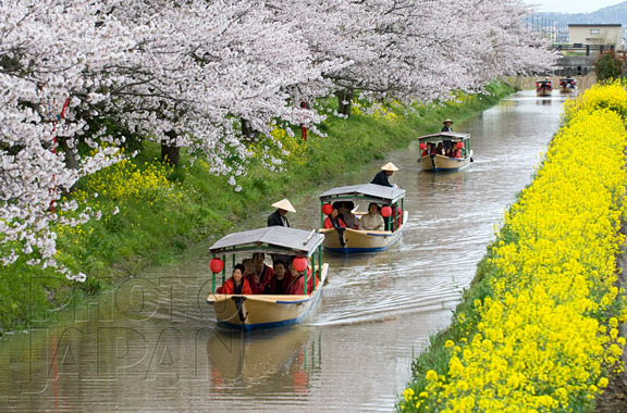 Photo Japan 6C-04