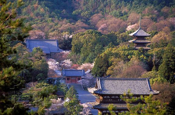 Photo Japan 7C-01